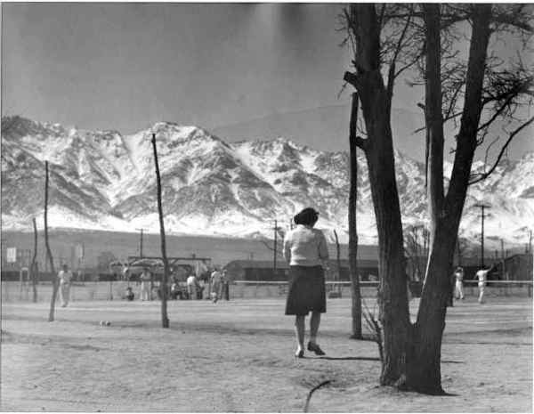 toyo miyatake picture analysis Find this pin and more on history: the face of america by toyo miyatake at congress more manzanar pictures this pic of toyo was taken.