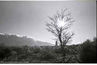1969 Pilgrimage-24