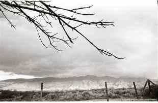 1969 Pilgrimage-29