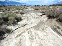 One of Manzanar's concentration camp-era roads was cut by flood waters.