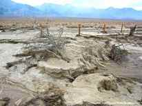 Evidence of erosion at Manzanar National Historic Site.