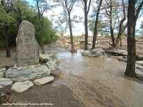 Merritt Park flooded