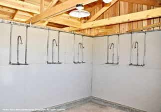 Communal shower in the Block 14 women's latrine.