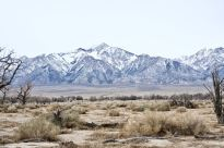Looking west at Mount Williamson from the Visitors Center at Manzanar.