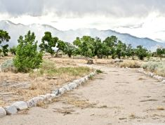 A look at the site of John Shepherd's ranch at Manzanar.
