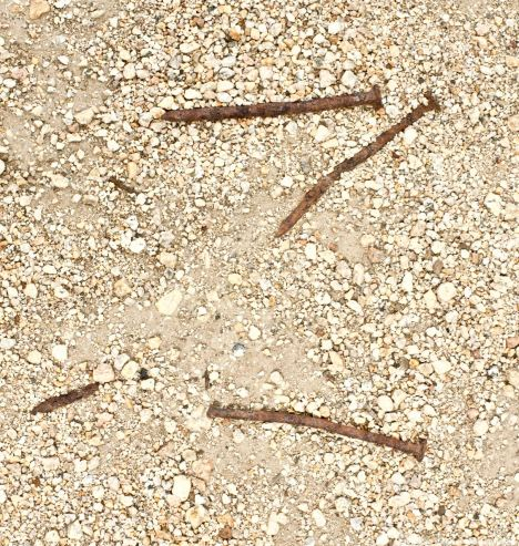 At the Block 12 mess hall garden: World War II-era nails left from when the Manzanar concentration camp was dismantled.